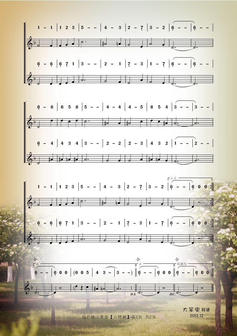 多情的巴乌葫芦丝曲谱同步展示