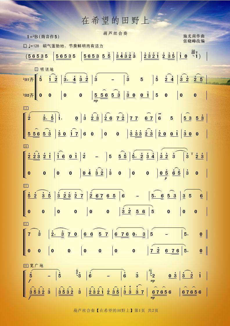 葫芦丝合奏《在希望的田野上》--祝老师和谱友